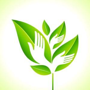 Health & Safety Eco-Friendly